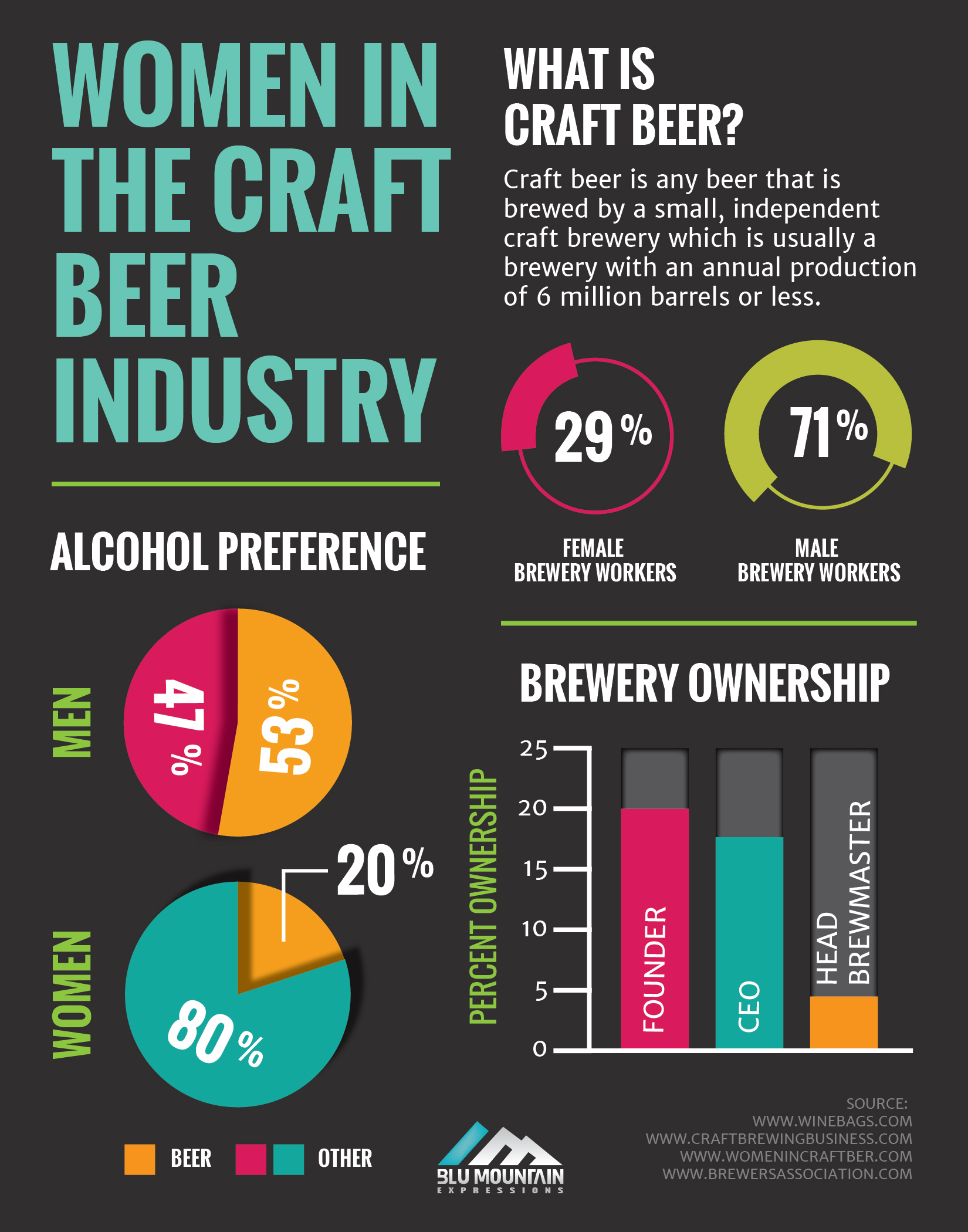 Women in the Craft Beer Industry Infographic